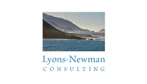 organizational leadership consultants